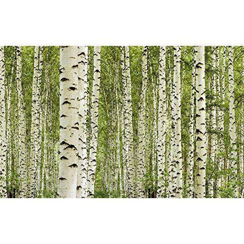 Ideal murando Fototapete Wald x cm VLIES TAPETE PREMIUM PROFI QUALIT T inklusive g Profi Vlies Kleister Top moderne Wanddeko Riesen Wandbild