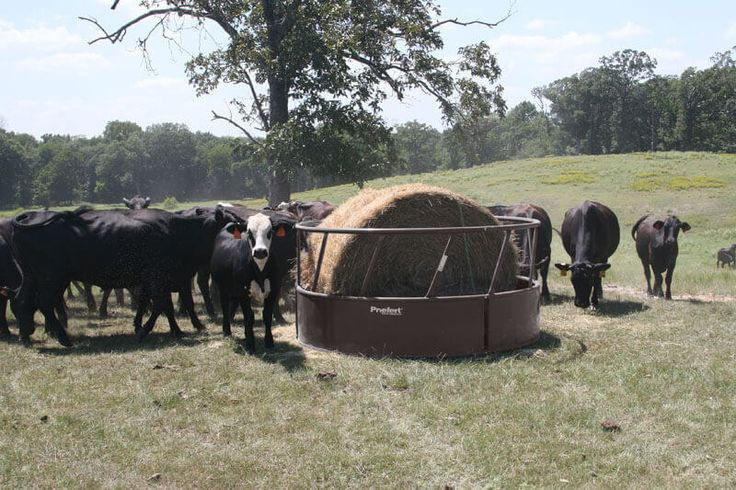 Priefert's Heavy Duty Round Bale feeders are a great option for producers that need a durable feeder.