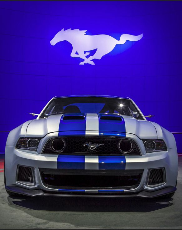 Need For Speed The Movie's Mustang