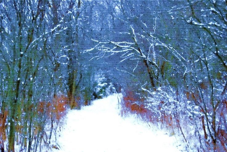 Digital Art/Desktop Wallpaper/A Winter's Walk 2