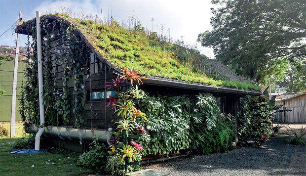 05-tecnologia-incorpora-recursos-de-reuso-de-agua-a-telhados-verdes