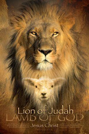 The Lion of Judah, Lamb of God contemporary Christian art.
