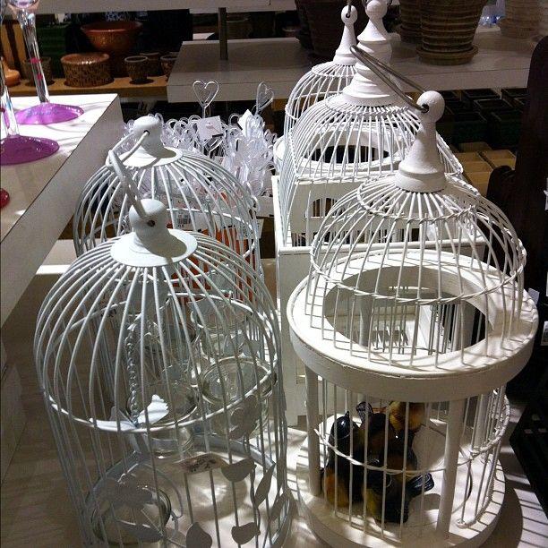 Images about birdcage centerpieces on pinterest