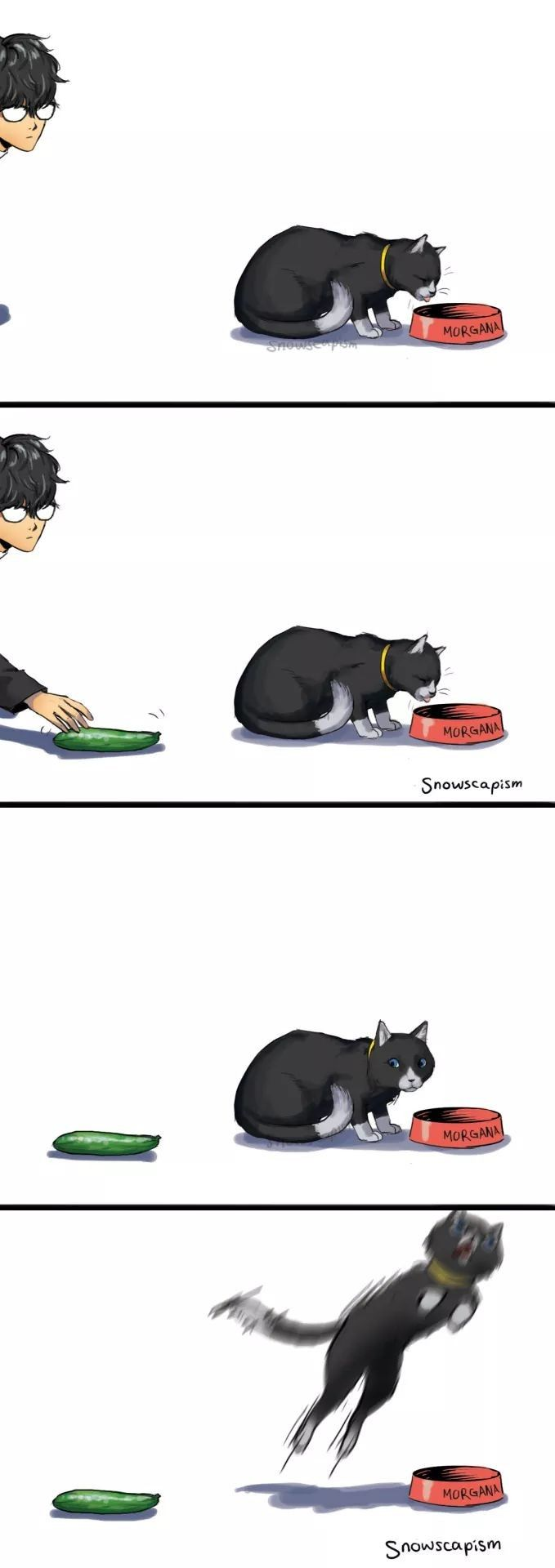 This happened to my cat once.