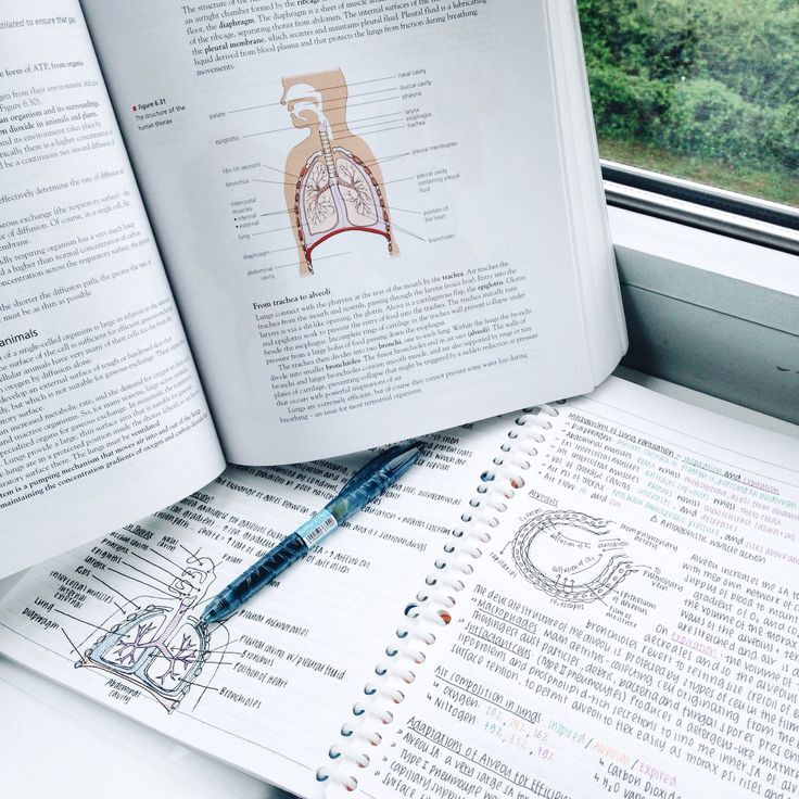 ocr human biology a level past papers
