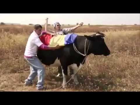 Serviciul Român de Comedie - Viaţa e Dură (Dança Kuduro)