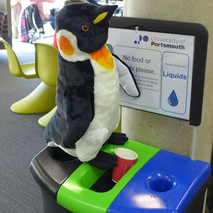 Our Library Penguin, Pablo (@uoppenguin on Twitter) dutifully recycling.  #GreenUniLibrary