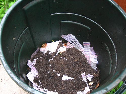 compost bin in trash can