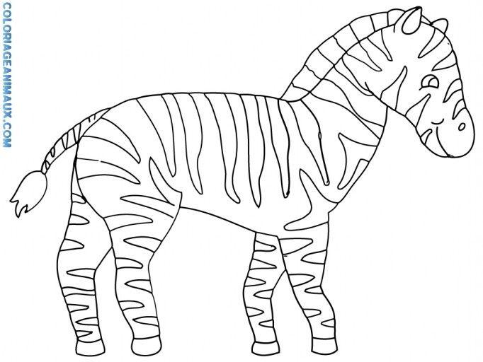Epingle Par Bc Chasteen Sur Animal Coloriage Zebre Coloriage