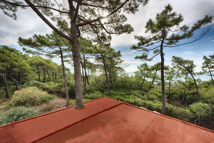 La casa tra gli alberi foto di Marco Tisi 2013