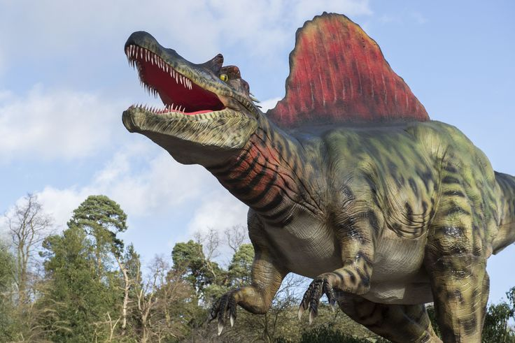 New for 2016! Spinosaurus has arrived at West Midland Safari Park!