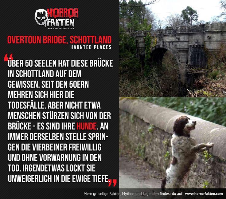 Haunted Place: Overtoun Bridge, Schottland Über 50 Seelen hat diese Brücke in Schottland auf dem Gewissen. Seit den 50ern mehren sich hier die Todesfälle. Aber nicht etwa Menschen stürzen sich von der Brücke - es sind ihre Hunde. An immer derselben Stelle springen die Vierbeiner freiwillig und ohne Vorwarnung in den Tod. Irgendetwas lockt sie unweigerlich in die ewige Tiefe.