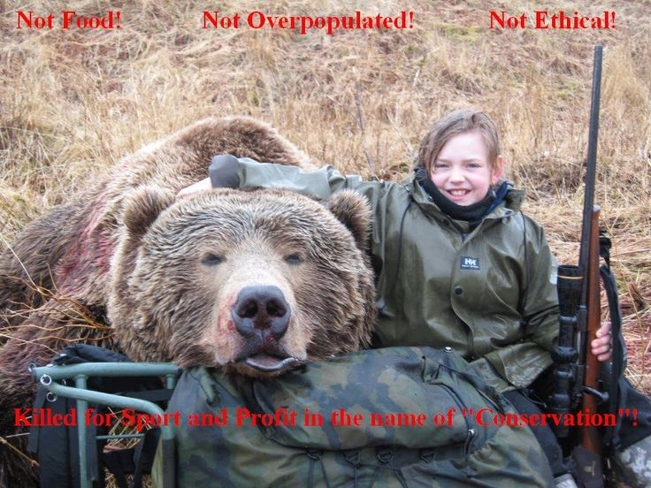 How sad is this to see? Makes me pretty darn sad. Such a majestic creature killed for trophy hunting. Please sign this petition to Stop Grizzly Bear Hunting:  http://www.gopetition.com/petitions/trophyhunt.html