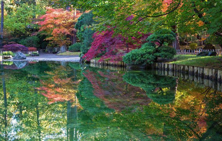 162 best images about spokane wa on pinterest then and for Nishinomiya tsutakawa japanese garden koi