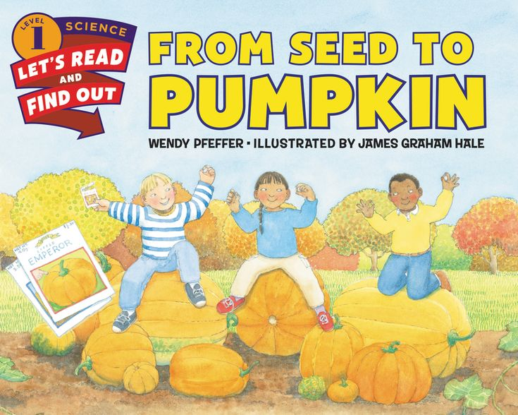 Vintage From Seed to Pumpkin by Wendy Pfeffer is a beautifully illustrated book explaining the life cycle