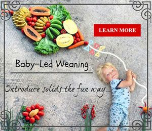 www.BabyMeetsFood.com - Give a Healthy Start on Solids with Baby-led Weaning