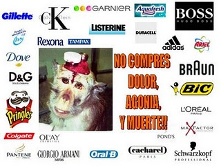 They test on animals:  - HOGAR: Ariel - Lejía Ace - Don Limpio – Fairy – Fairy para lavavajillas – Febreze - Viakal - Lenor - Swiffer – Braun - BIC (bolígrafos, cuchillas, mecheros…) – Adidas - 3M - Coral vajillas – Cutex – Denim – Ray Ban – Pronto – Raid – Duracell - Mr. Clean - Oxi Clean – Ajax – Liquid paper – Paper Mate – Silklence – bolígrafos Parker – Air Wick – Ambi – Axe - Blue Buffalo – Calgon – Kleenex - ...    - COSMÉTICA E HIGIENE PERSONAL: Tampax - Head & Shoulders (H&S) – Olay…