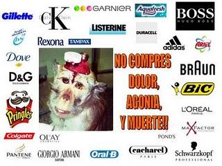 They test on animals:  - HOGAR: Ariel - Lejía Ace - Don Limpio – Fairy – Fairy para lavavajillas – Febreze - Viakal - Lenor - Swiffer – Braun - BIC (bolígrafos, cuchillas, mecheros…) – Adidas - 3M - Coral vajillas – Cutex – Denim – Ray Ban – Pronto – Raid – Duracell - Mr. Clean - Oxi Clean – Ajax – Liquid paper – Paper Mate – Silklence – bolígrafos Parker – Air Wick – Ambi – Axe - Blue Buffalo – Calgon – Kleenex - ...    - COSMÉTICA E HIGIENE PERSONAL: Tampax - Head & Shoulders (H&S;) – Olay…