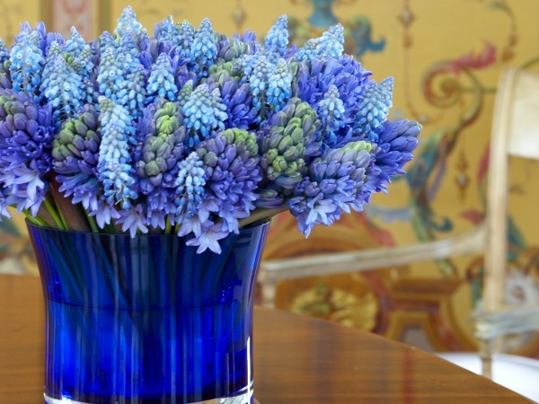 Blue Flowers - Michael George