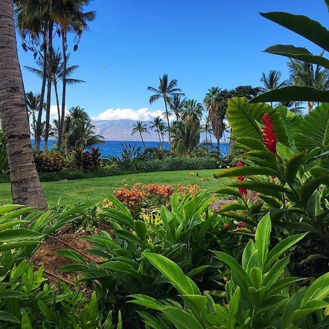 A beautiful #view from the Wailea Beach Marriott Resort and Spa (@waileamarriott) in #Maui, #Hawaii. Photo: @loveleightravels #FROSCHMoments