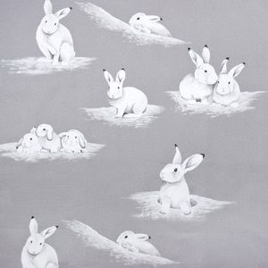 Hertex Collection - Small celebrities. Design: Peter Rabbit Cloud, order from Taylor Made House www.taylormadehouse.co.za