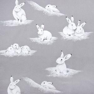 Hertex Collection - Small celebrities. Design: Peter Rabbit Cloud