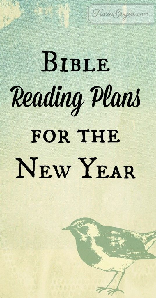 In the past we've gone through many different outlines and recently have been enjoying writing out different passages.  But the new year offers a great opportunity for a fresh start and a solid attempt to daily read through the Bible.