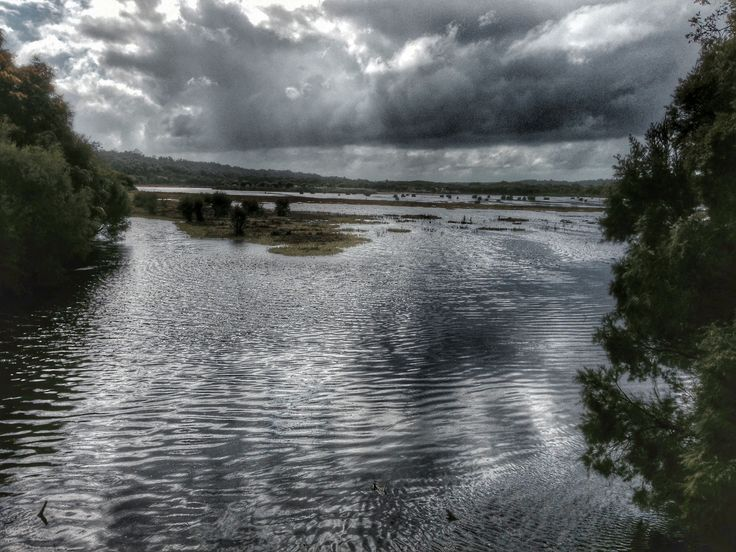 Yanchep National Park before the storm 6th Sept 2014