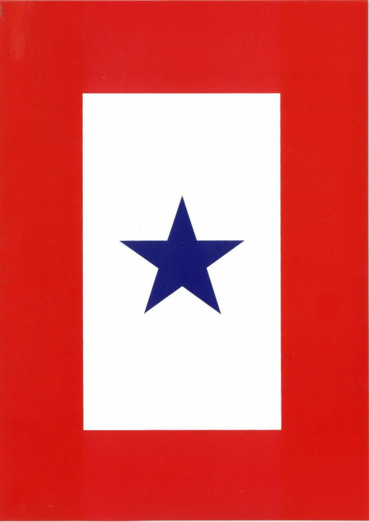 Blue Star Flag: If you see it, the family has someone deployed. Thank them for their sacrifice.