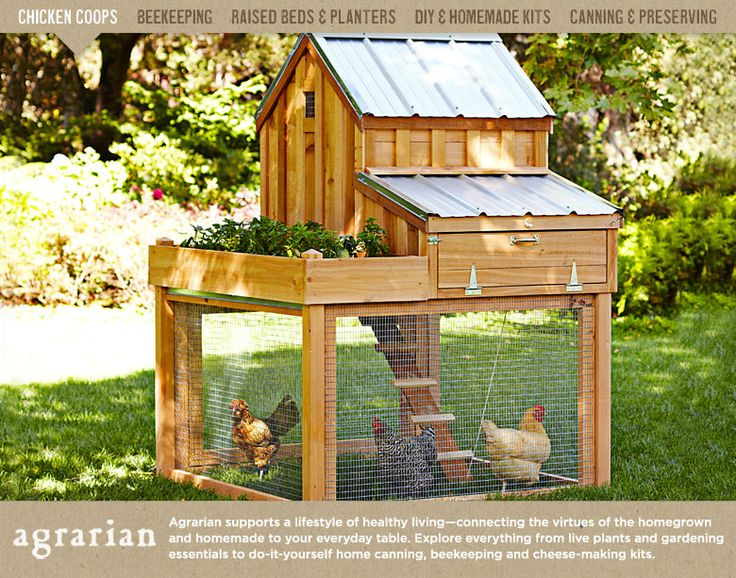 For my future hobby farm, except perhaps MUCH MUCH larger...Chicken Coops