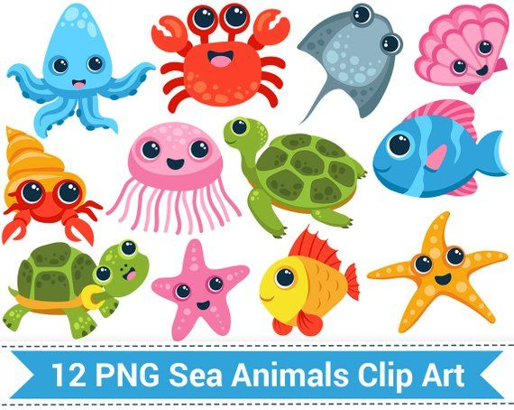 Sea Animal Clipart Sea Creatures Clip Art Fish Turtle Etsy Animal Clipart Clip Art Sea Animals