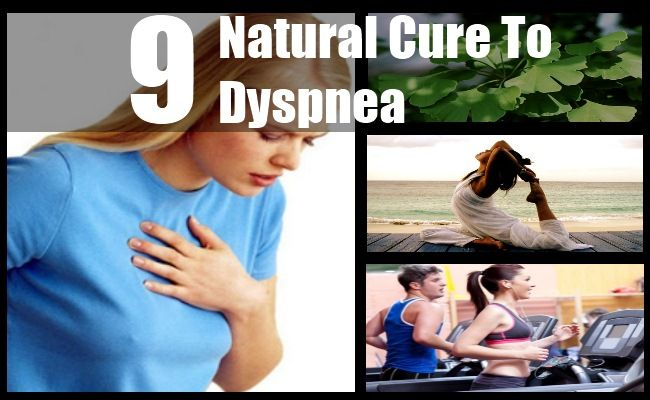 Dyspnea is the medical term used to refer to shortness of breath or labored breathing. While overexercise is one of the more common causes of shortness of breath, some of the other reasons could be an underlying lung or respiratory disease. Therefore, it is essential that you visit a doctor before you try any of the natural cures suggested in this article. Some of the best herbs you can take to cure dyspnea include Butterbur, Boswellia, Ivy Leaf and Gingko Biloba. Certain exercises such as…
