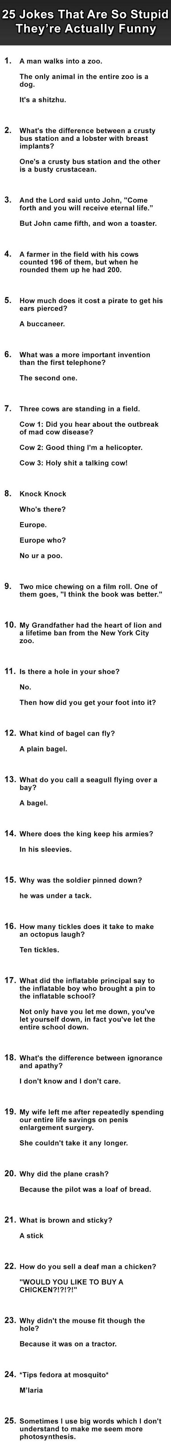 25 Jokes That Are So Stupid They're Actually Funny