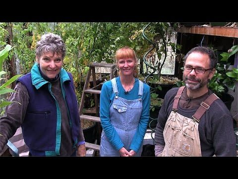 Grow Your Food in a Nook and Cranny Garden, part 1 - YouTube | Great ideas for raising chickens