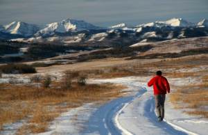 8 Reasons To Run through the Winter