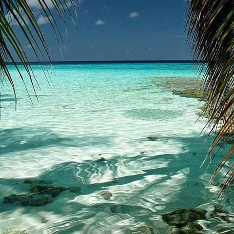 Maldives. Is this water for real?  It looks heavenly.
