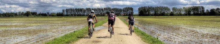 Gruppo di testa durante una delle cicloescursioni (Foto di D.Fregolent) organizzate dall'Associazione Uomo e Territorio Pro Natura lungo La Via dei Cairoli (www.laviadeicairoli.it).