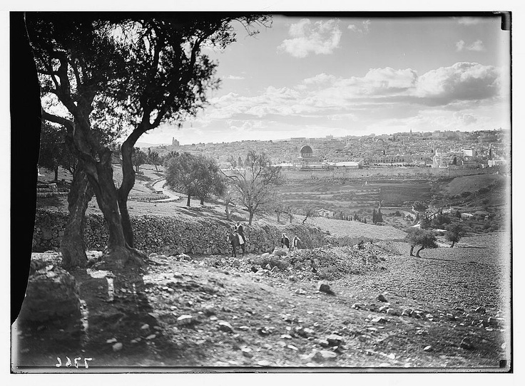 1920 Nebi Musa Riots: 17 Best Images About History: Jewish On Pinterest