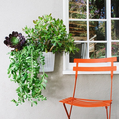 Living Wall Planter From Woolly Pocket Helps The Environment While Creating  An Indoor, Vertical Garden. Shop Design Accents At AHAlife.