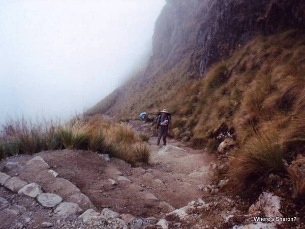 Looking down the walk up to dead womans pass on the inca trail