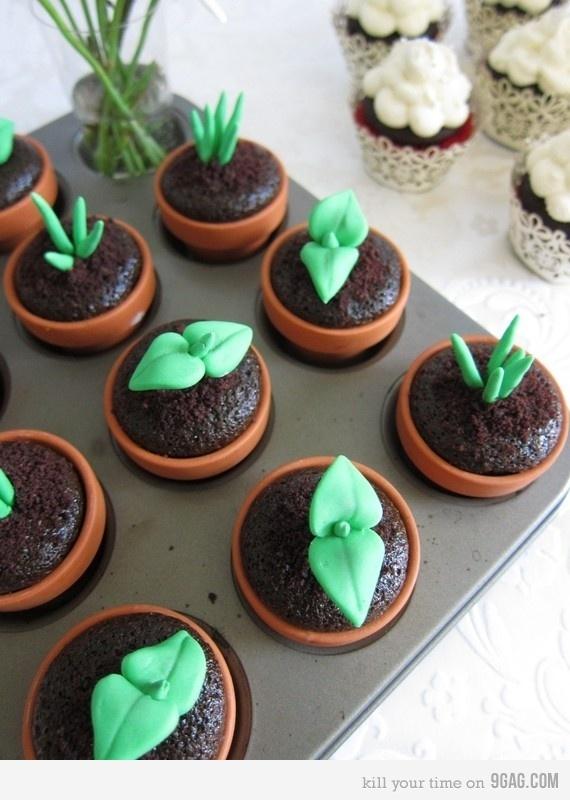 Cupcakes... green