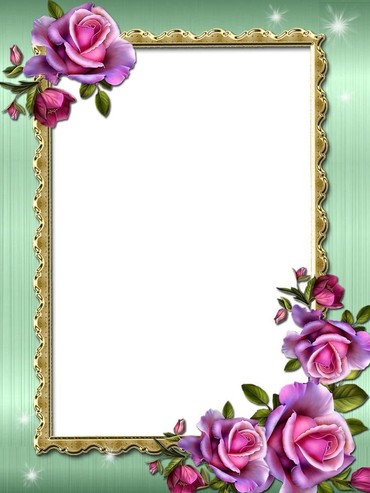 Frames And Border Butterfly Flower