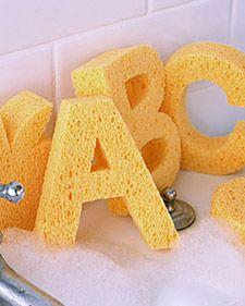 Compressed Sponges For Crafts