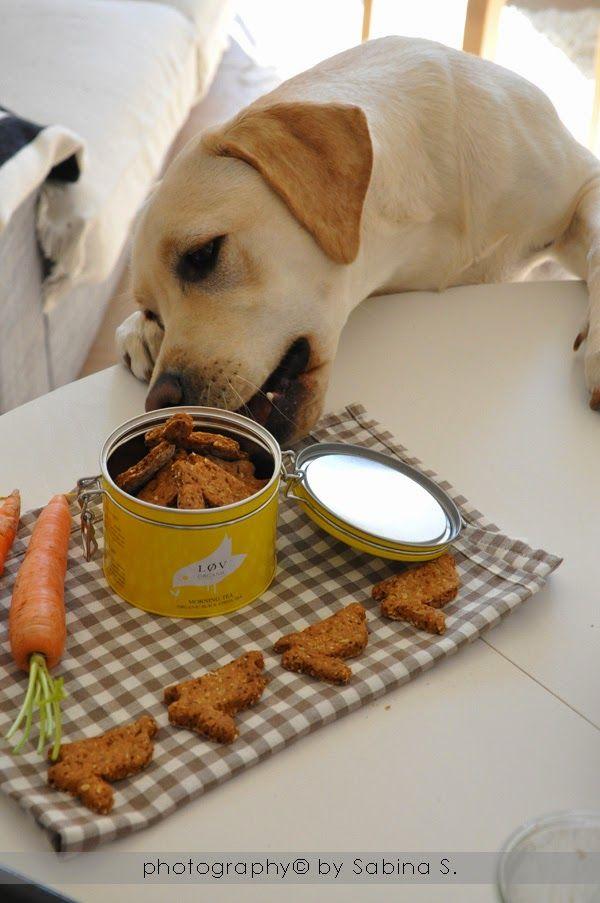 Due bionde in cucina: Biscotti per cane con carote e formaggio