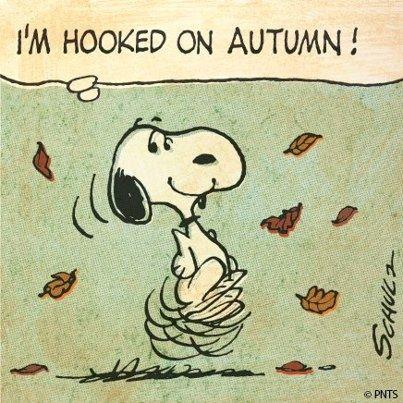 Resultado de imagem para it's autumn time