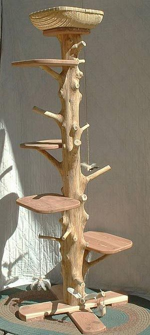 Où trouver un arbre à chat qui ne soit pas affreux ? - Page 6