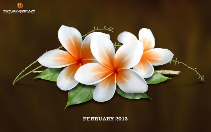 Valentine week list Date sheet of Valentines Day Calendar