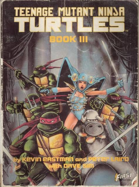 First Teenage Mutant Ninja Turtles Graphic Novel, Book III