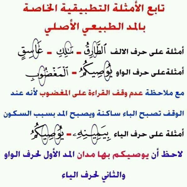 Pin By Celil Yagmuroglu On أهل الله وخاصته Math Quran Calligraphy