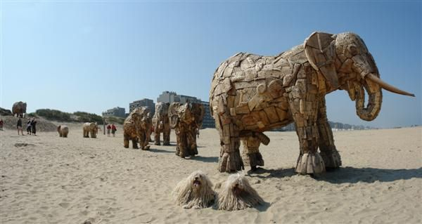 Life sized elephants sculptures  by Andries Botha in Belgium: Size Elephants, Botha Sculpture, Sculpture Fun, Elephants Sculpture